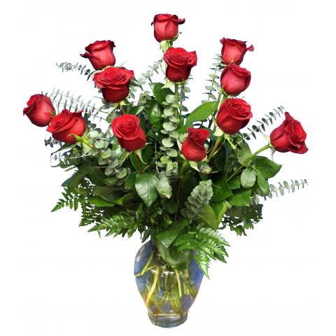 One Dozen long stemmed Roses