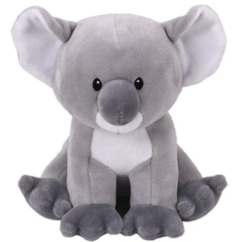 Cherish the Grey Koala