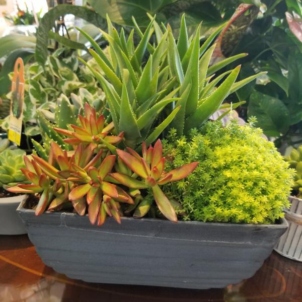 Large Slate Gray Planter Box
