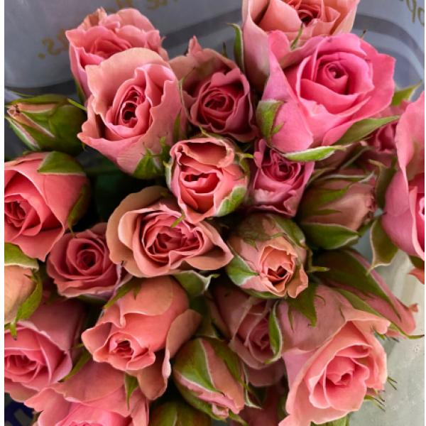 Spray roses in a vase