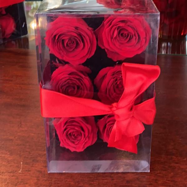 Forever rose boxed