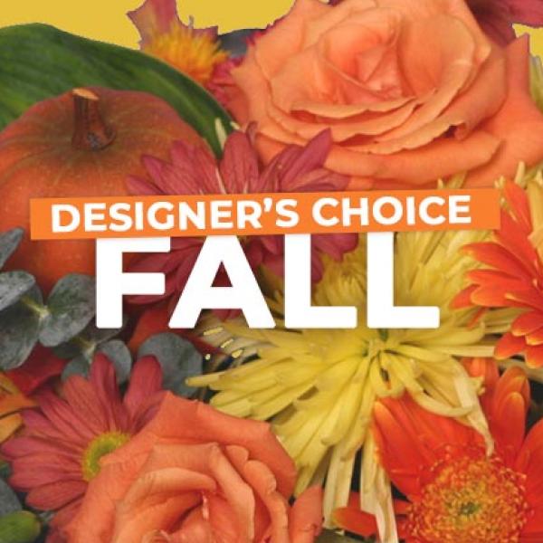 Fall Designers Choice