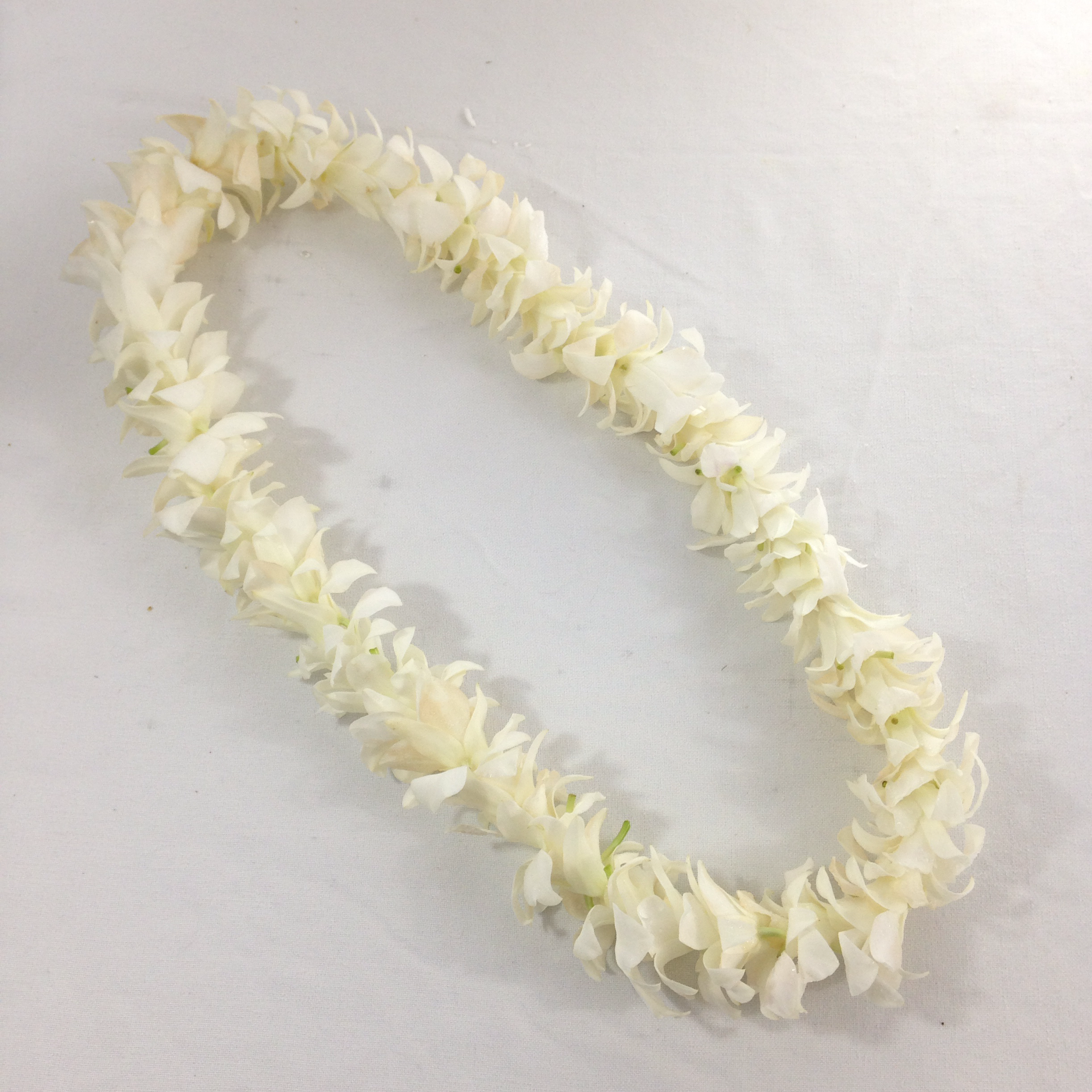 Single White Dendrobium Orchid Lei