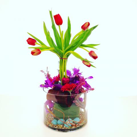 Tulip Valentine