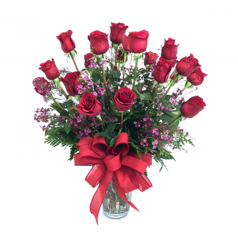 Two Dozen Premium Long Stem Red Roses with Filler
