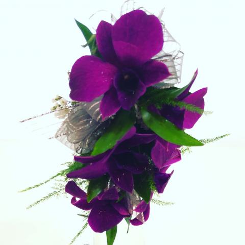 Wristlet Orchid Corsage