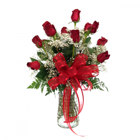 One Dozen Premium Long Stem Red Roses with Filler