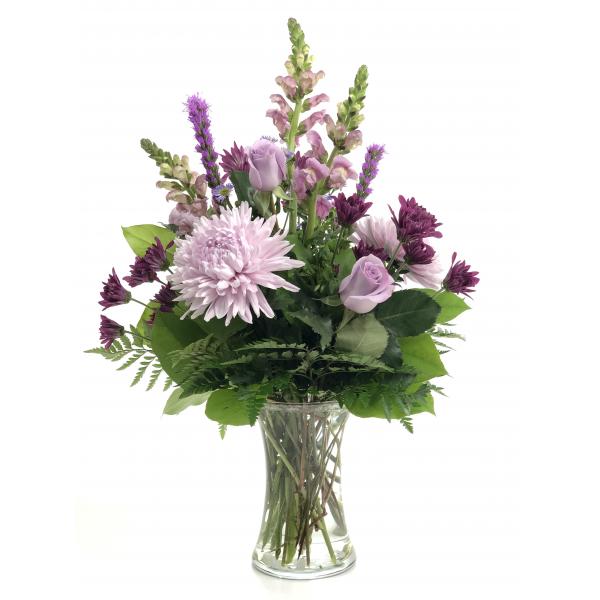 Lavender Splender