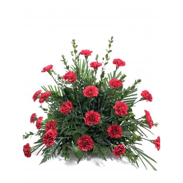 Red Carnation Spray