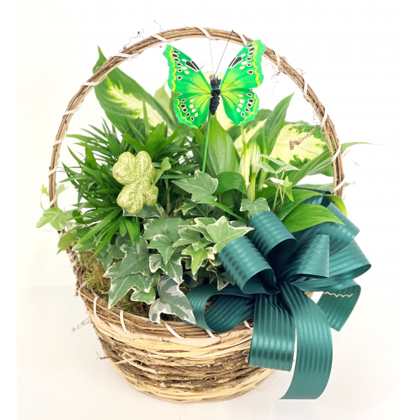 ST. PATTY'S DAY BASKET OF GREENS