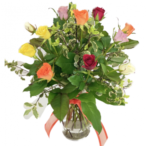 1 dz. Assorted Color Baby Roses