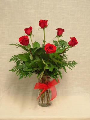 Half Dozen Premium Long Stem Red Roses