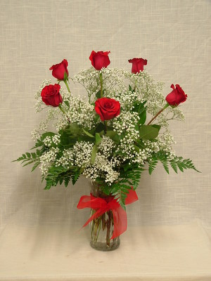 Half Dozen Premium Long Stem Red Roses with Filler