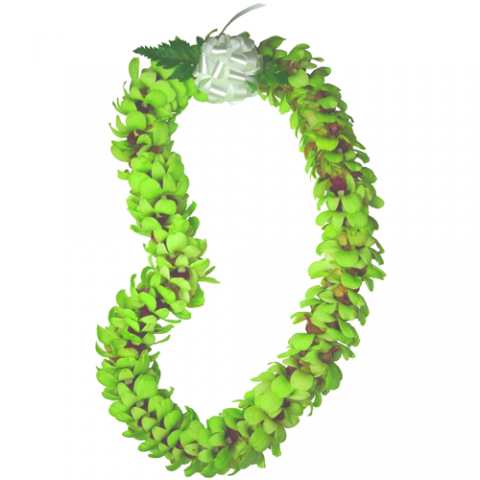 Green Orchid Double Lei