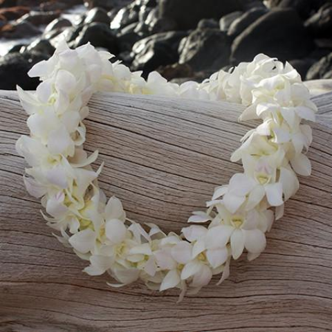 Classic White Double Orchid Lei