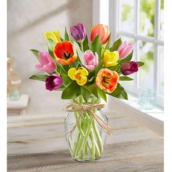 Timeless Tulips