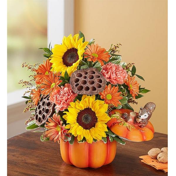 Pumpkin N' Posies™