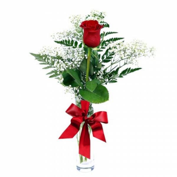 Single Rose Budvase