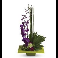 Zen Artistry Bouquet