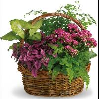 Secret Garden Basket
