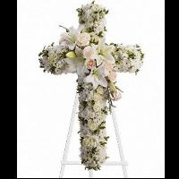 Divine Light Cross