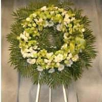 Green Cymbidium Orchid Wreath w/ White Background