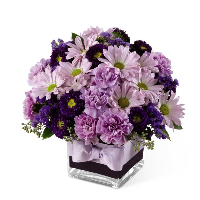 Purple & Lavender Cube Bouquet