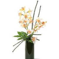 Arrangement Of  Cymbidiums And Equisetum