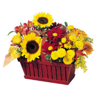 Seasonal Wicker Basket Arrangement
