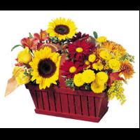Seasonal Wicker Basket Arrangement