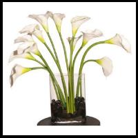 Vase Arrangement Of Large White Callas