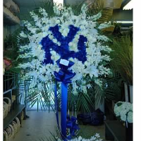 Yankees Fan Tribute - All Sports & Teams Available