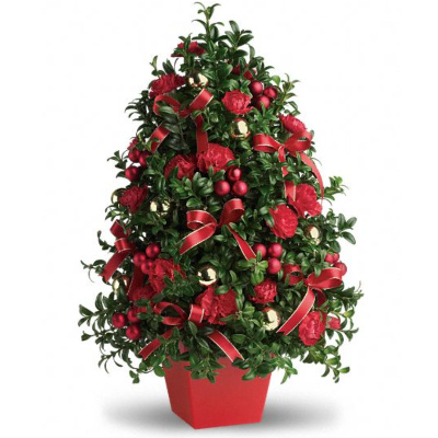 Decorated Boxwood or Spruce