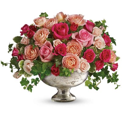 Elegance in Roses