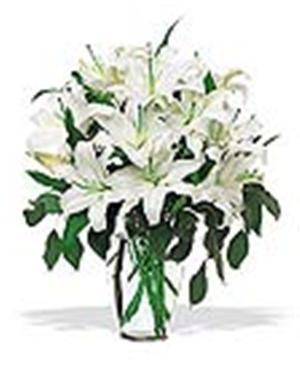 Gorgeous Casablanca Lilies