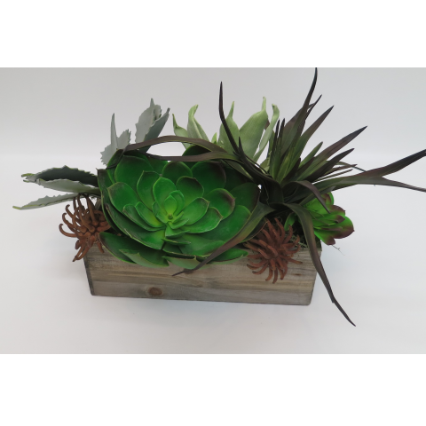 KS-42 Faux Succulents