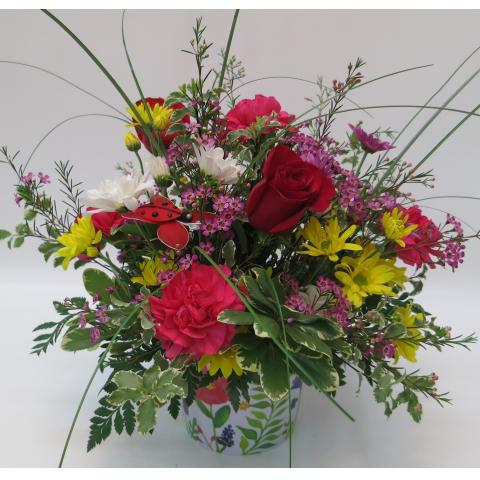 KD-218 Happy Blooms!
