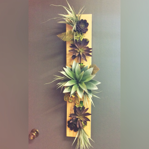 SUCCULENT WALL HANGING-SILK