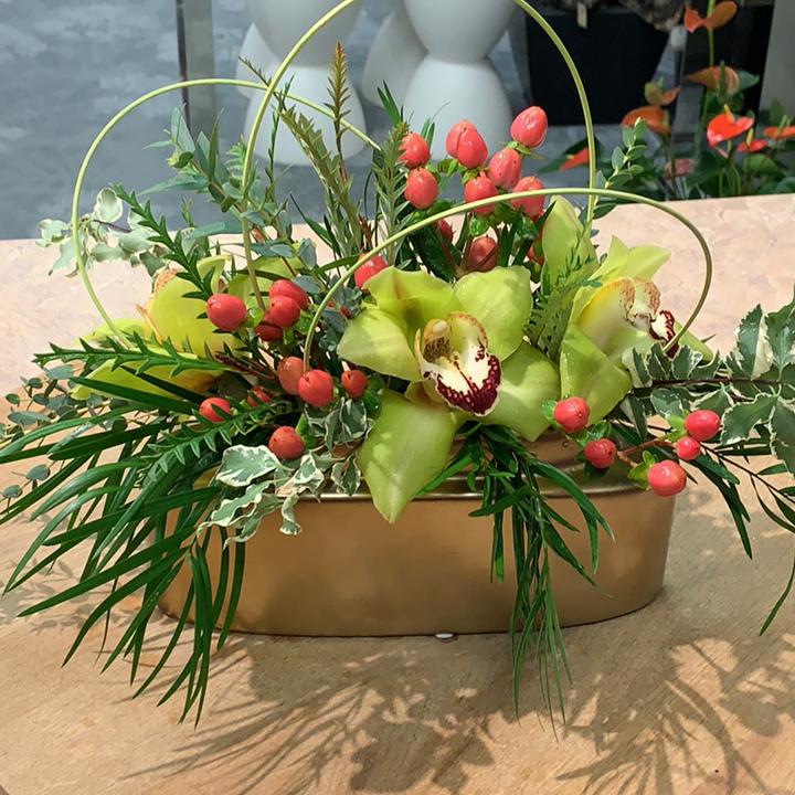 Orchids in elegant ceramic