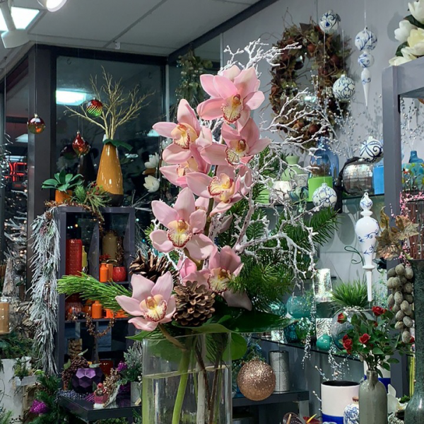 Prestigious orchids