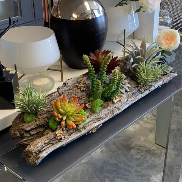 Succulent Centerpiece