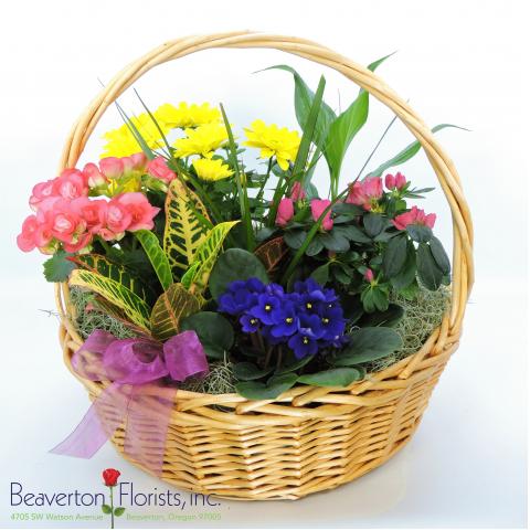 Garden Basket Jumbo