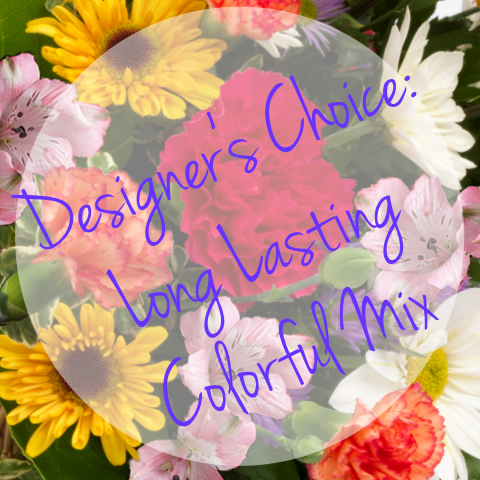 Designer's Choice Long Lasting Colorful Mix
