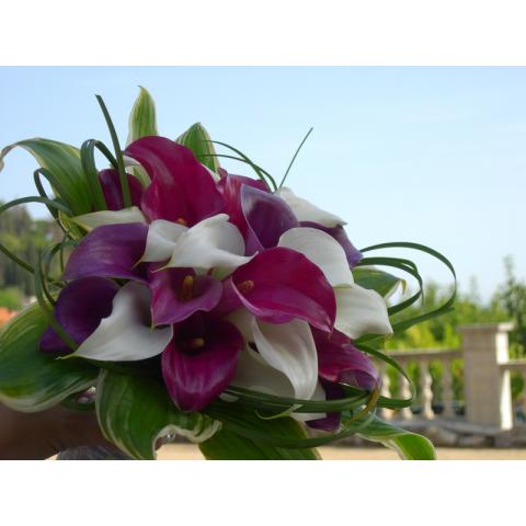 Beaverton Florists Beaverton - Three colors mini calla lilies bouquet.