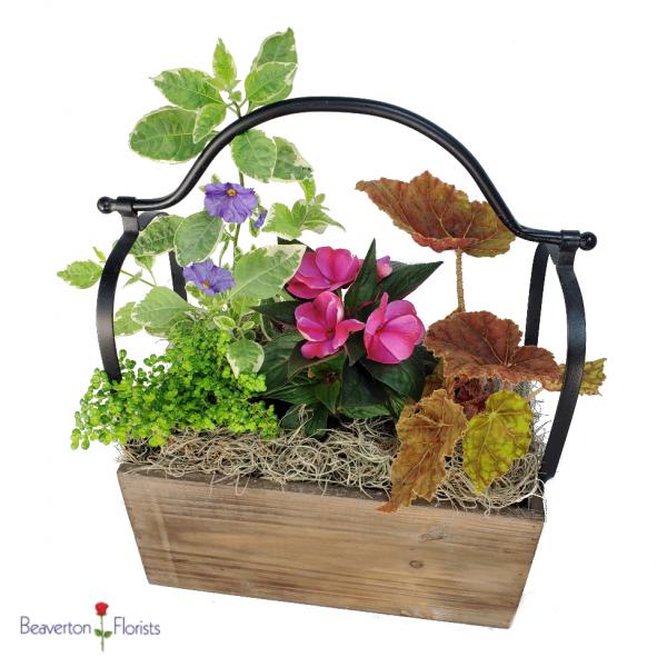The Garden Window Planter