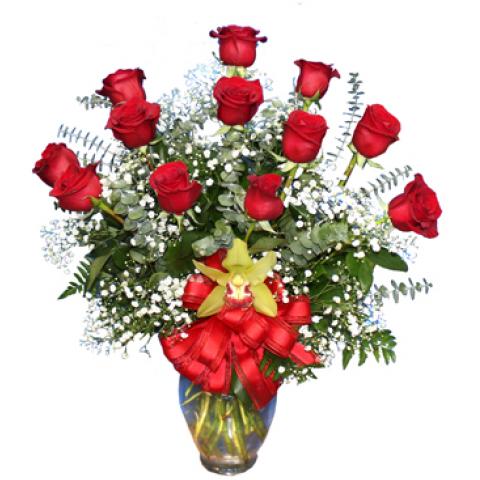 Deluxe Dozen Long Stemmed Roses