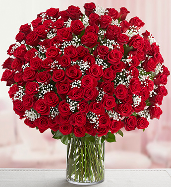 Tallahassee Florist Same Day Flower Delivery Hilly Fields