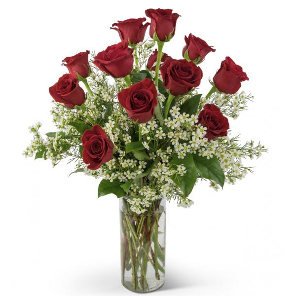 Dozen Premium Long Stem Red Roses