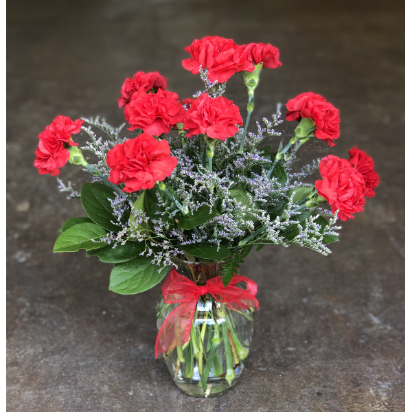 Dozen Red Carnations for ACO
