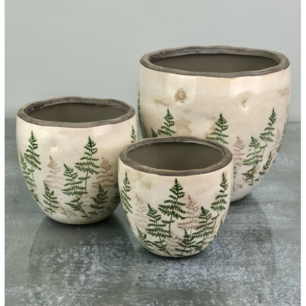 Cream crackle pots with fern
